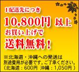 1配送先につき税抜き価格10,800円以上お買い上げで送料無料!