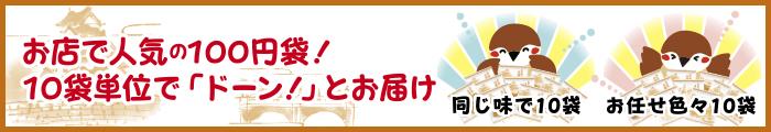 お店で人気の100円袋!10袋単位で「ドーン!」とお届け
